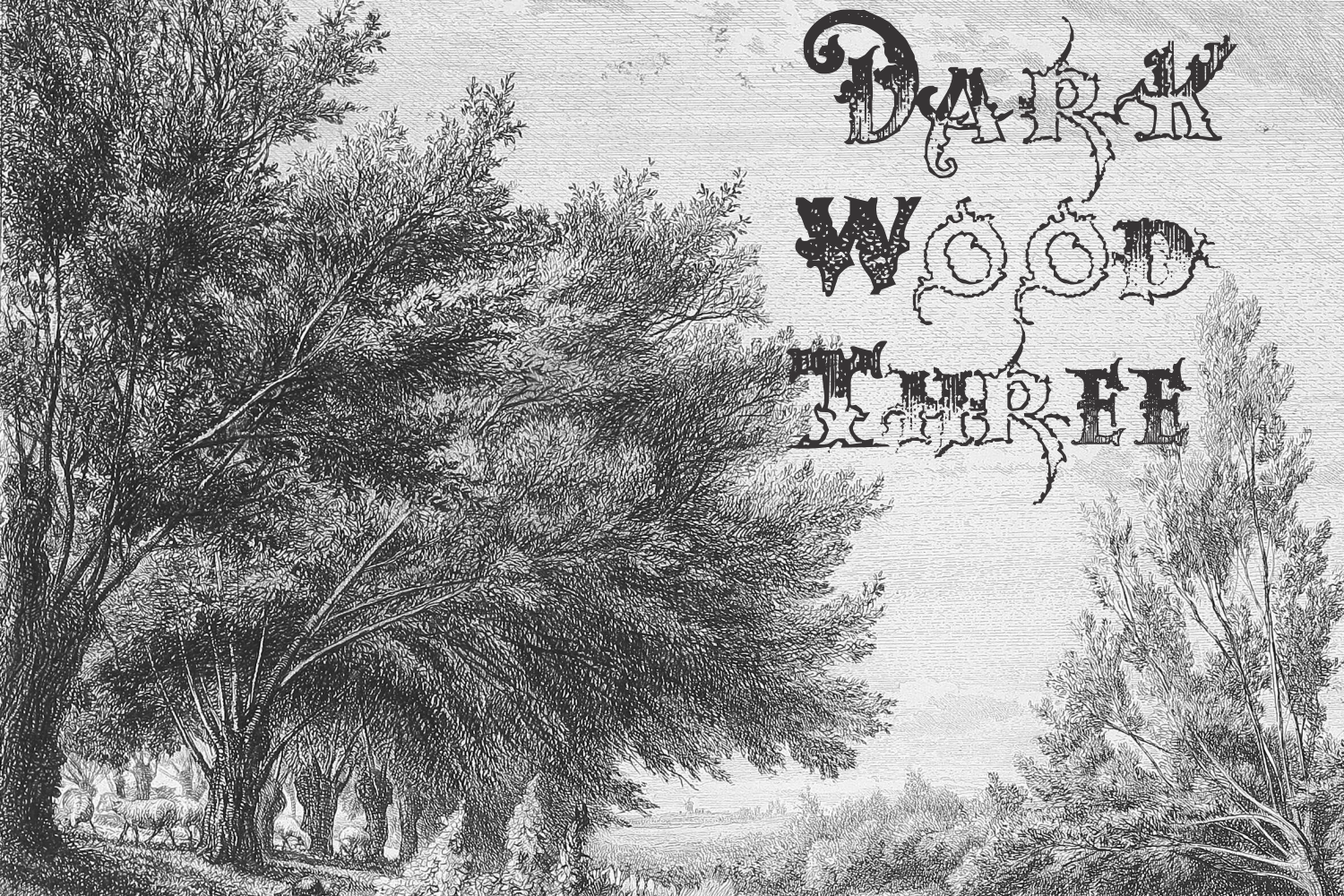 Dark Wood (family pack) example image 2