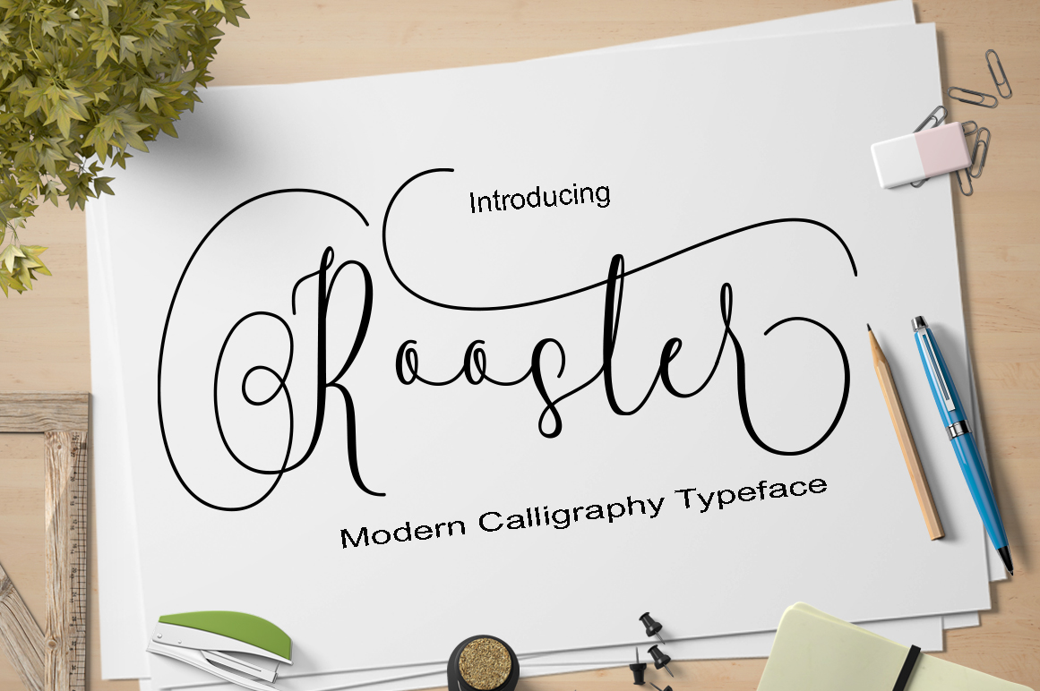 Calligraphy Font Bundles example image 4