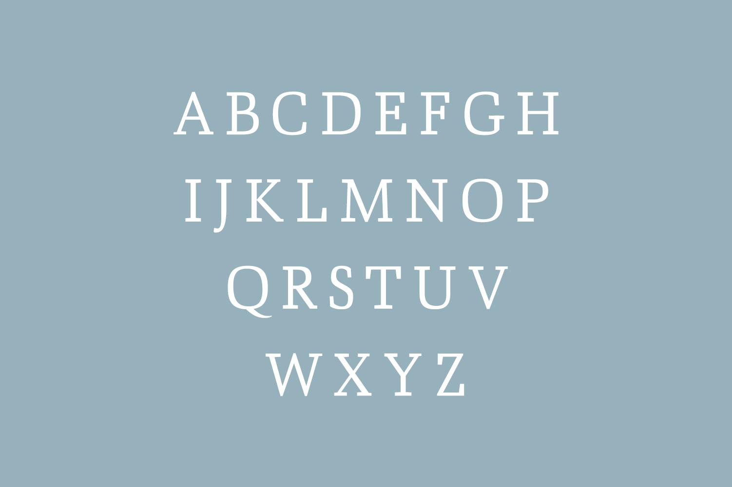 Ailish Slab Serif 3 Font Family example image 2