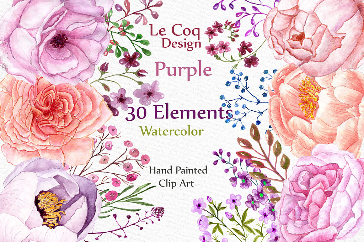 Watercolor peonies flower clipart example image 1