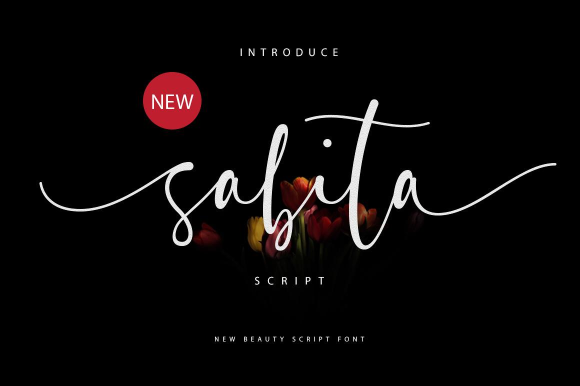 Sabita Script example image 1
