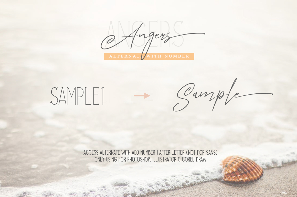 Angers Script Font Duo example image 10