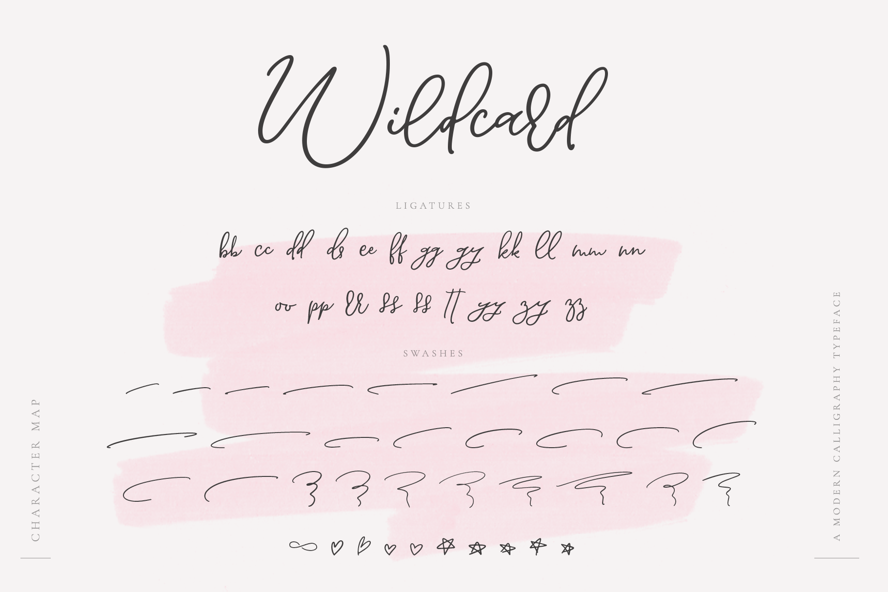 Wildcard | A Modern Calligraphy Script example image 13