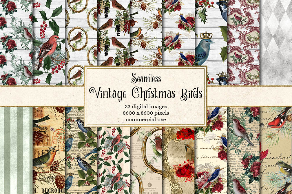 Vintage Christmas Birds Digital Paper example image 1