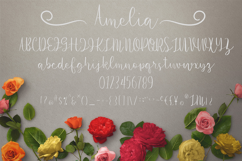 Amelia example image 4