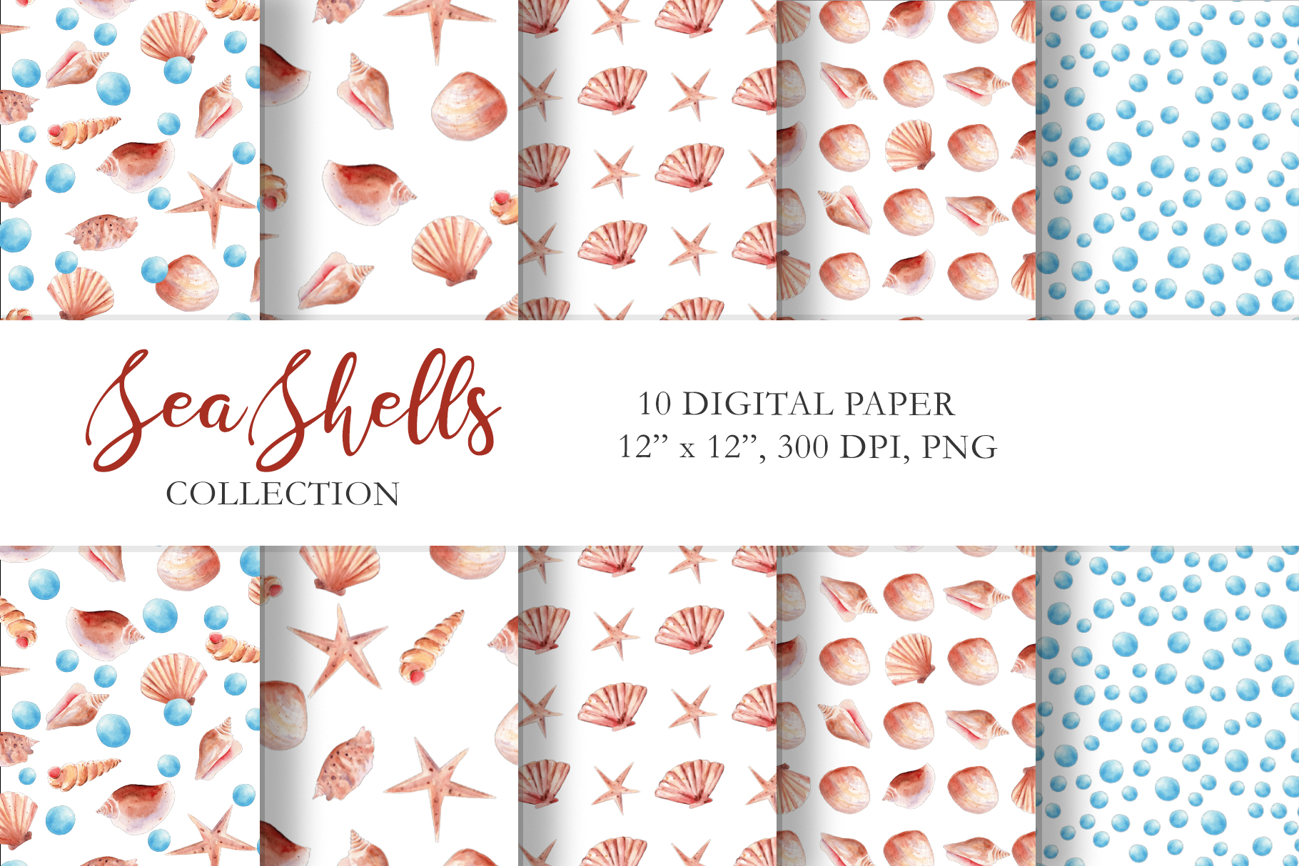 Seashells Clipart Collection example image 4