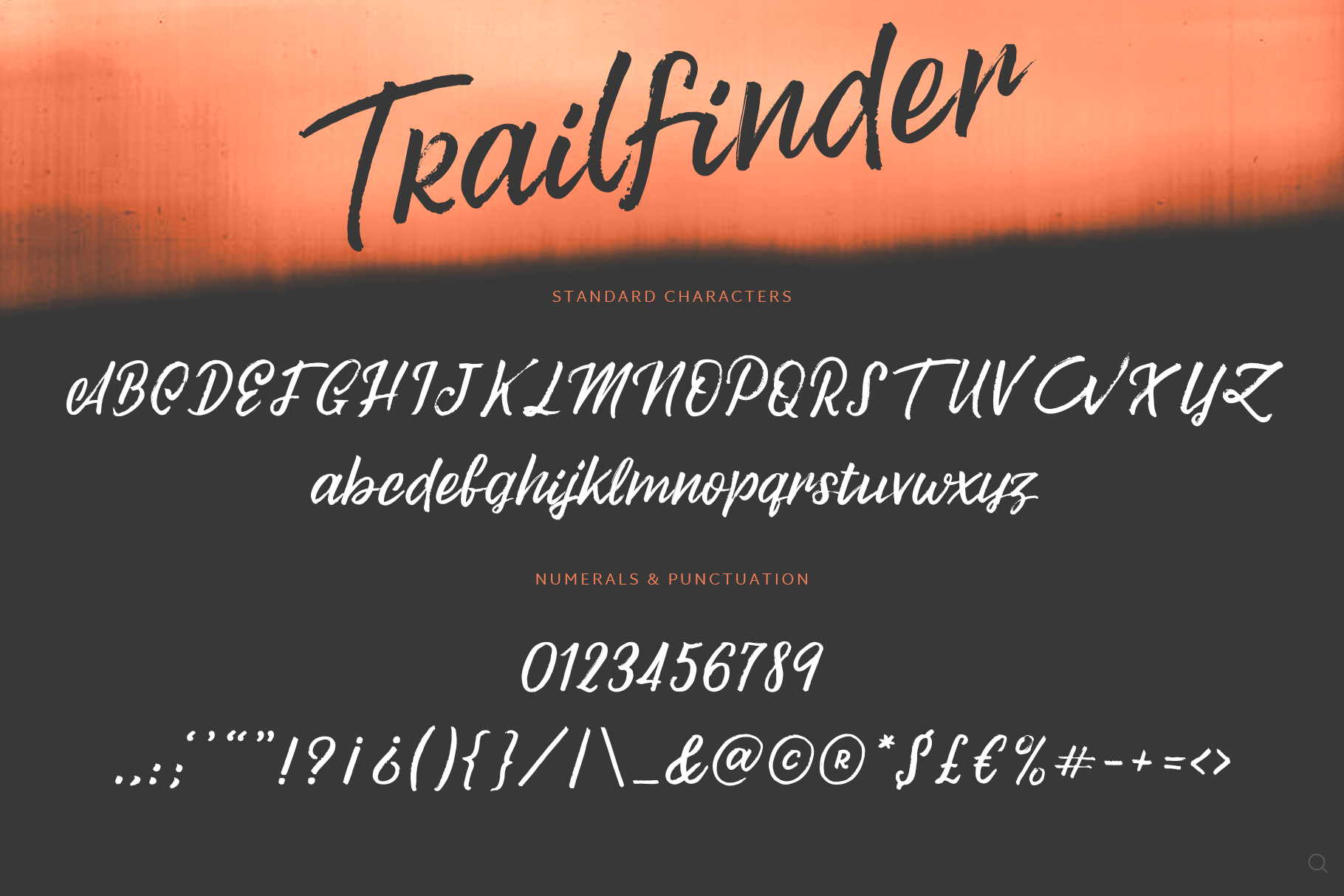 Trailfinder | A Brush Script Font example image 7