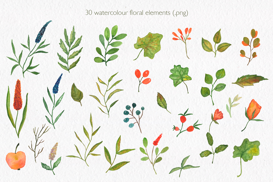 Pumpkin collection. Watercolor clipart. example image 3