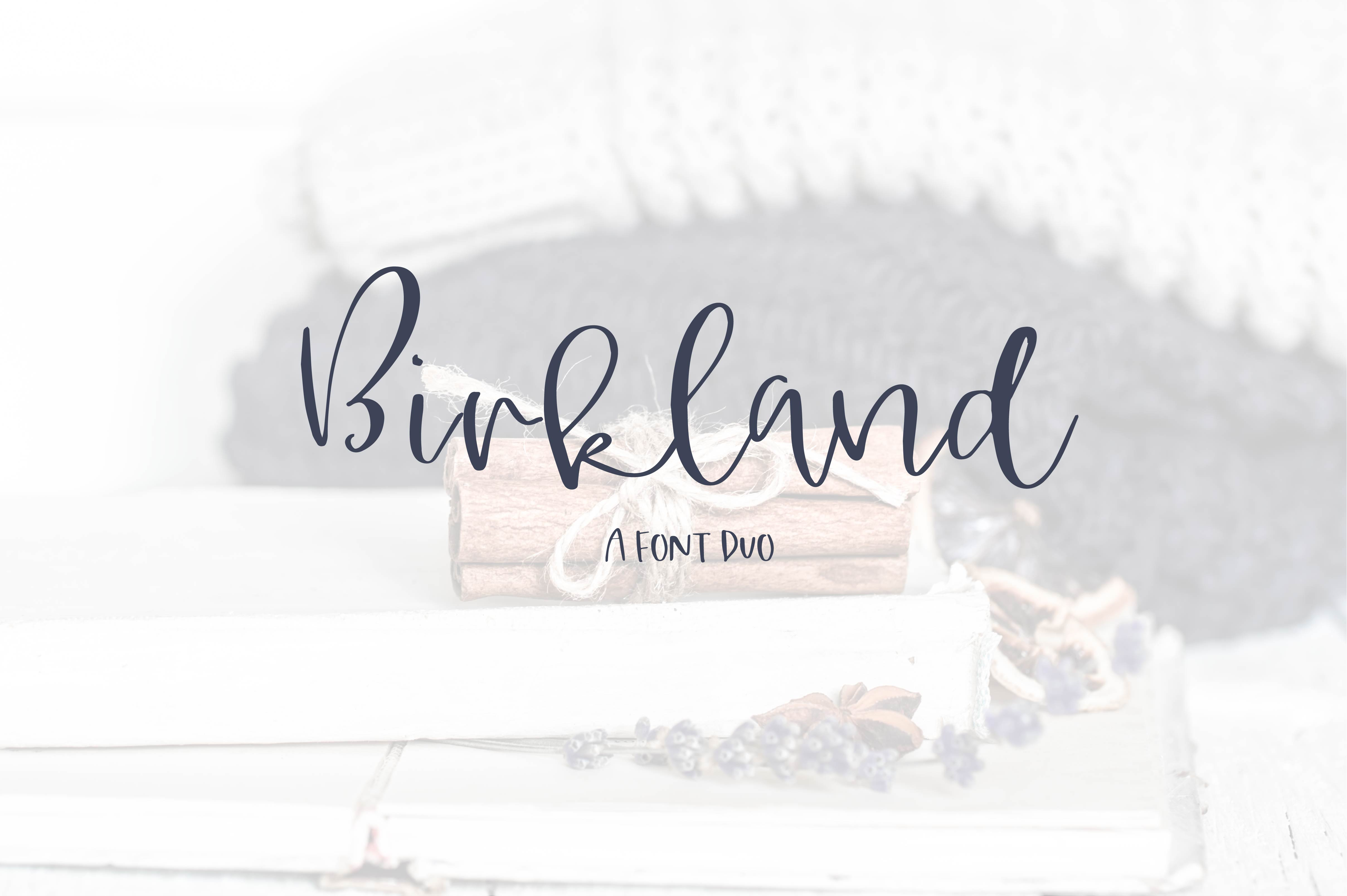Birkland - A Font Duo example image 1