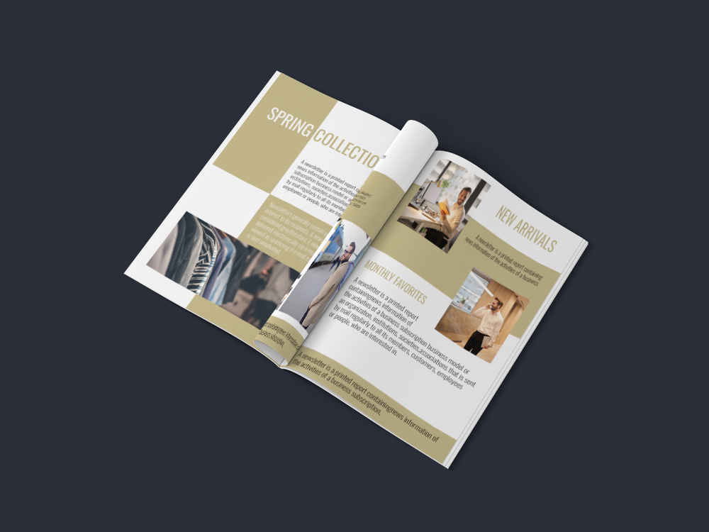 Professional Newsletter - 6 Printable Templates example image 9