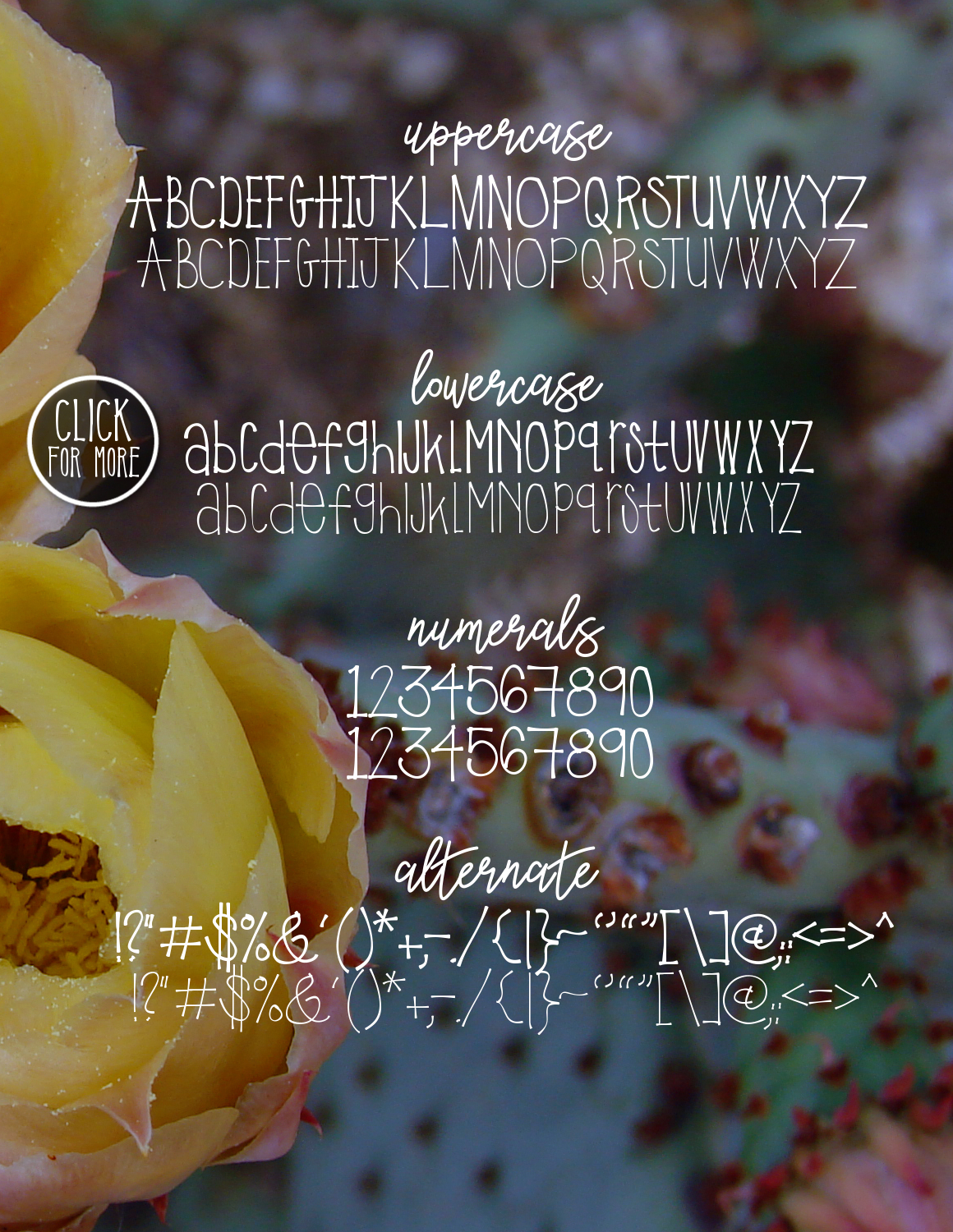 Prickly Pear Typeface example image 2