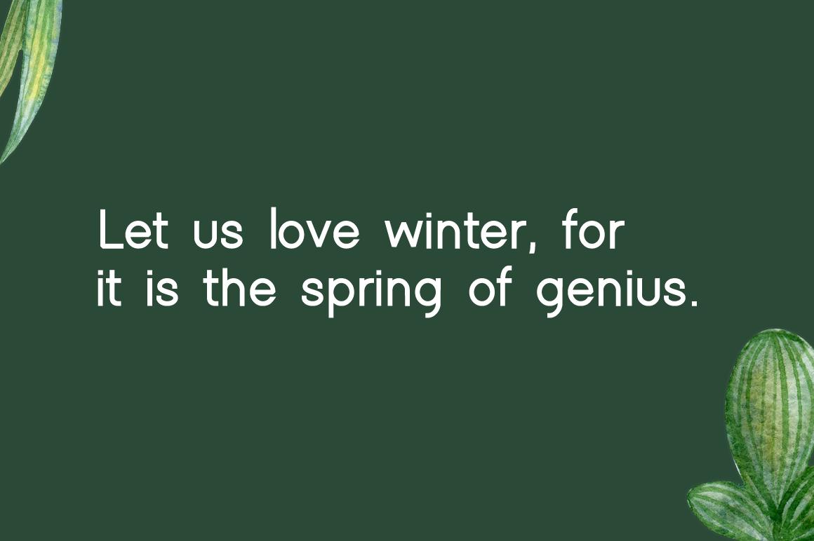 Winter example image 2