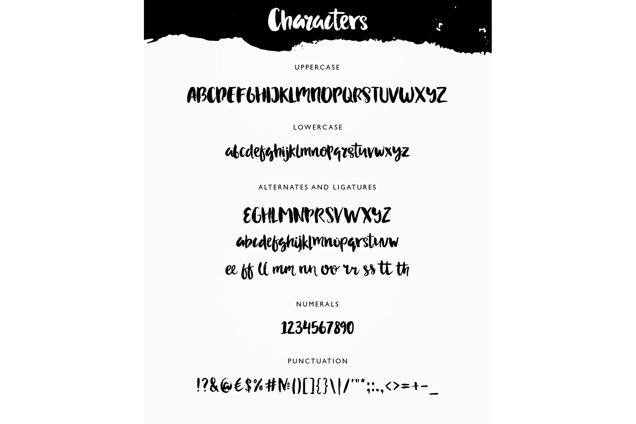Adeline Typeface - Brush Script example image 2