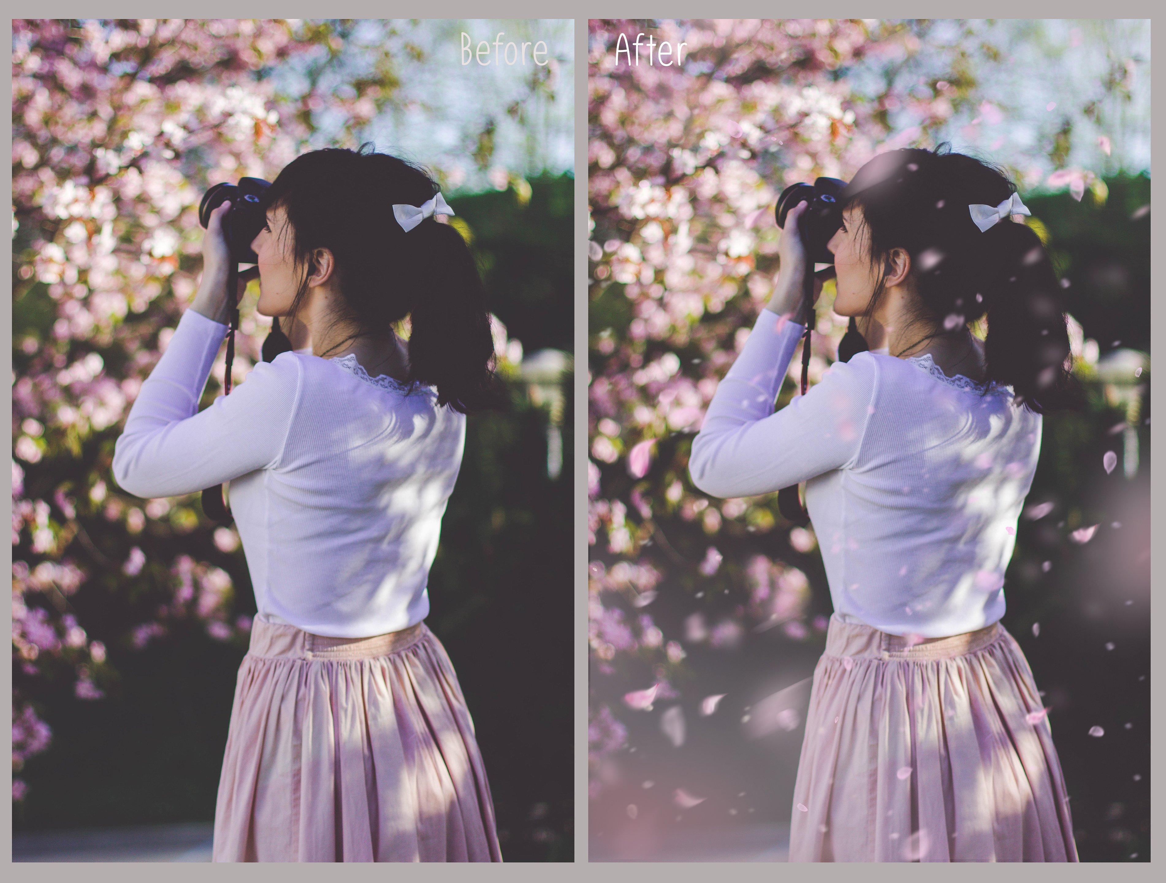 White petals photo overlays example image 3