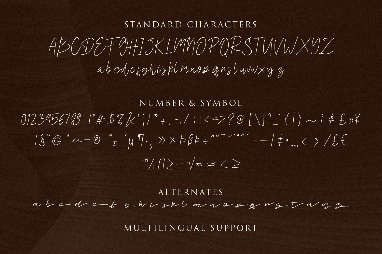 Daltana Handwriting Font example image 9