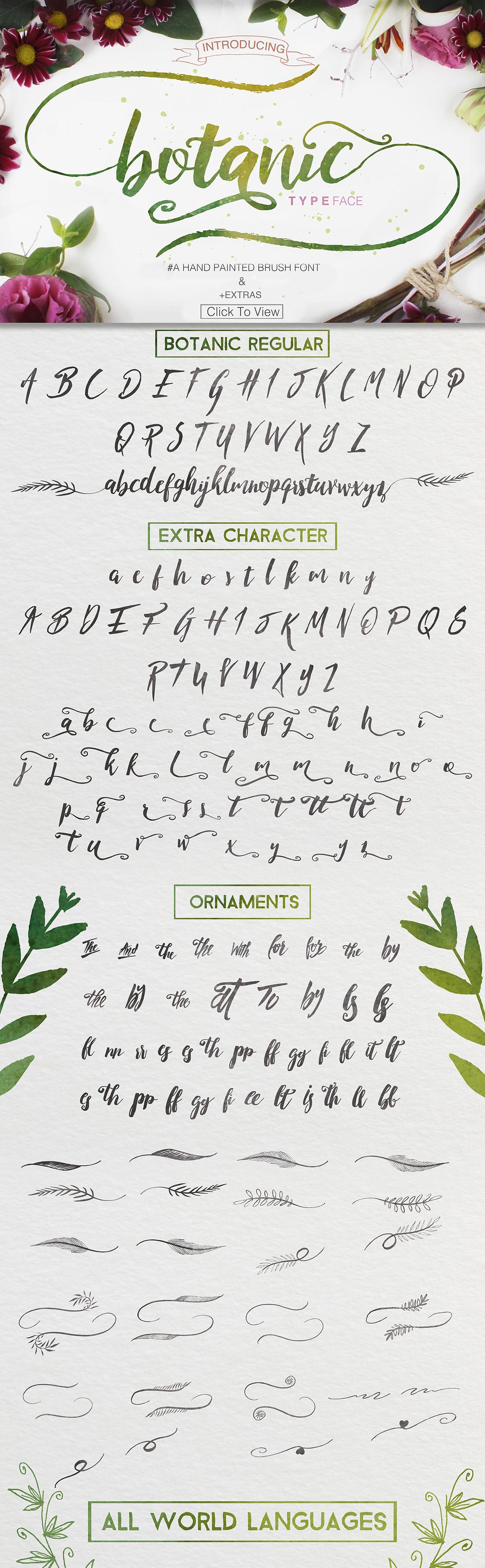 Botanic Swashes Font & Extras example image 7