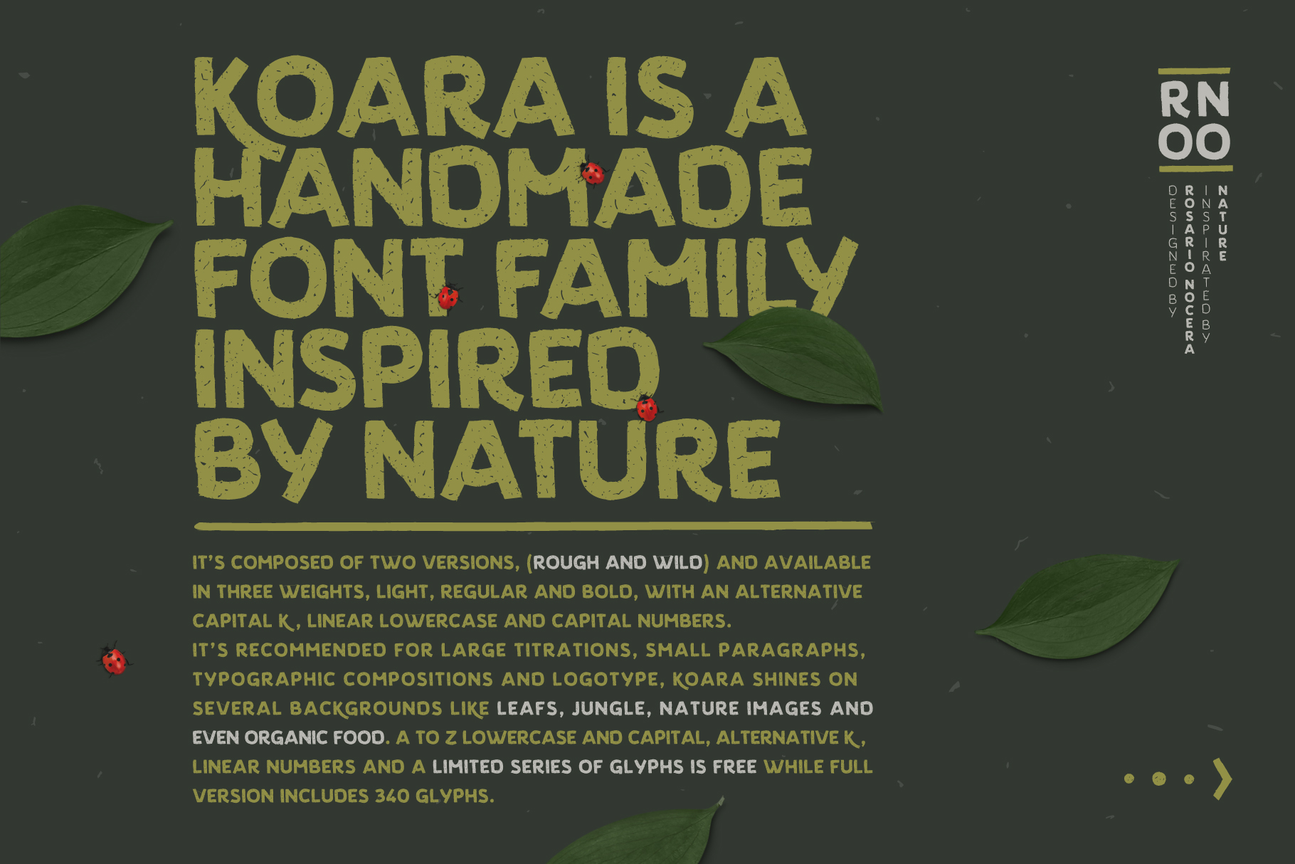 Koara example image 2