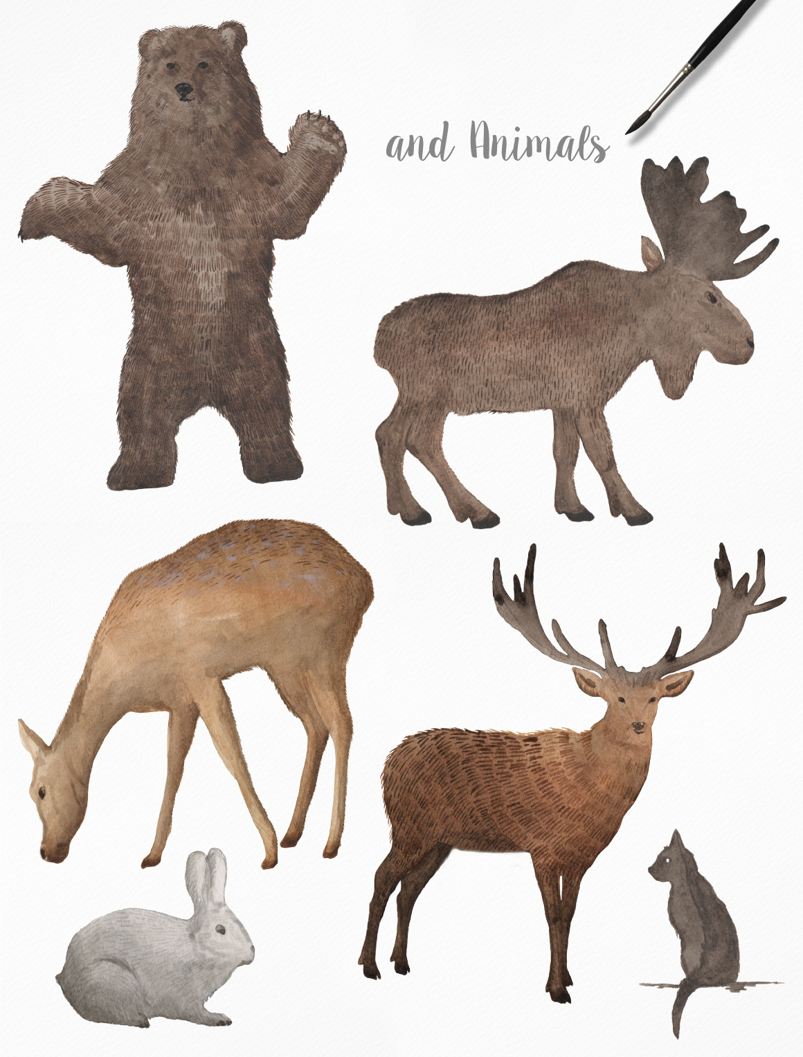Watercolor Frames, Patterns and Animals example image 5