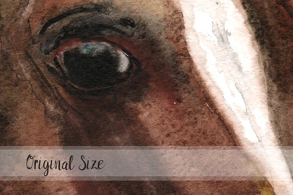 Watercolor Clip Art & Print - Horse example image 2