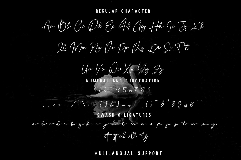 Quetzalli signature font example image 9