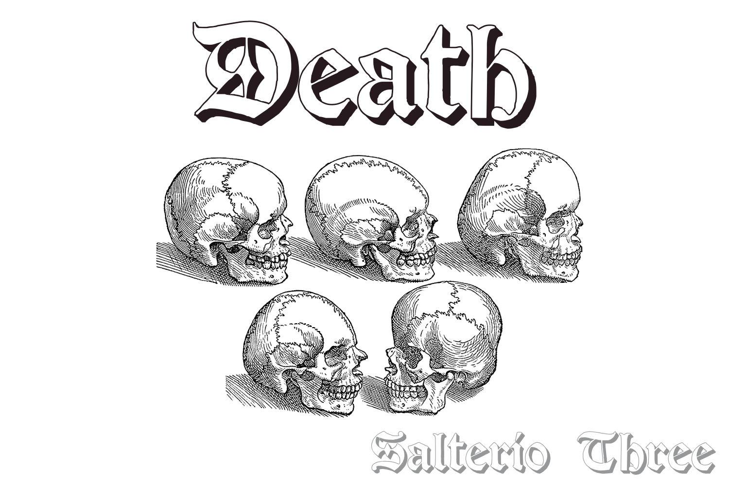 Salterio (six pack fonts) example image 8