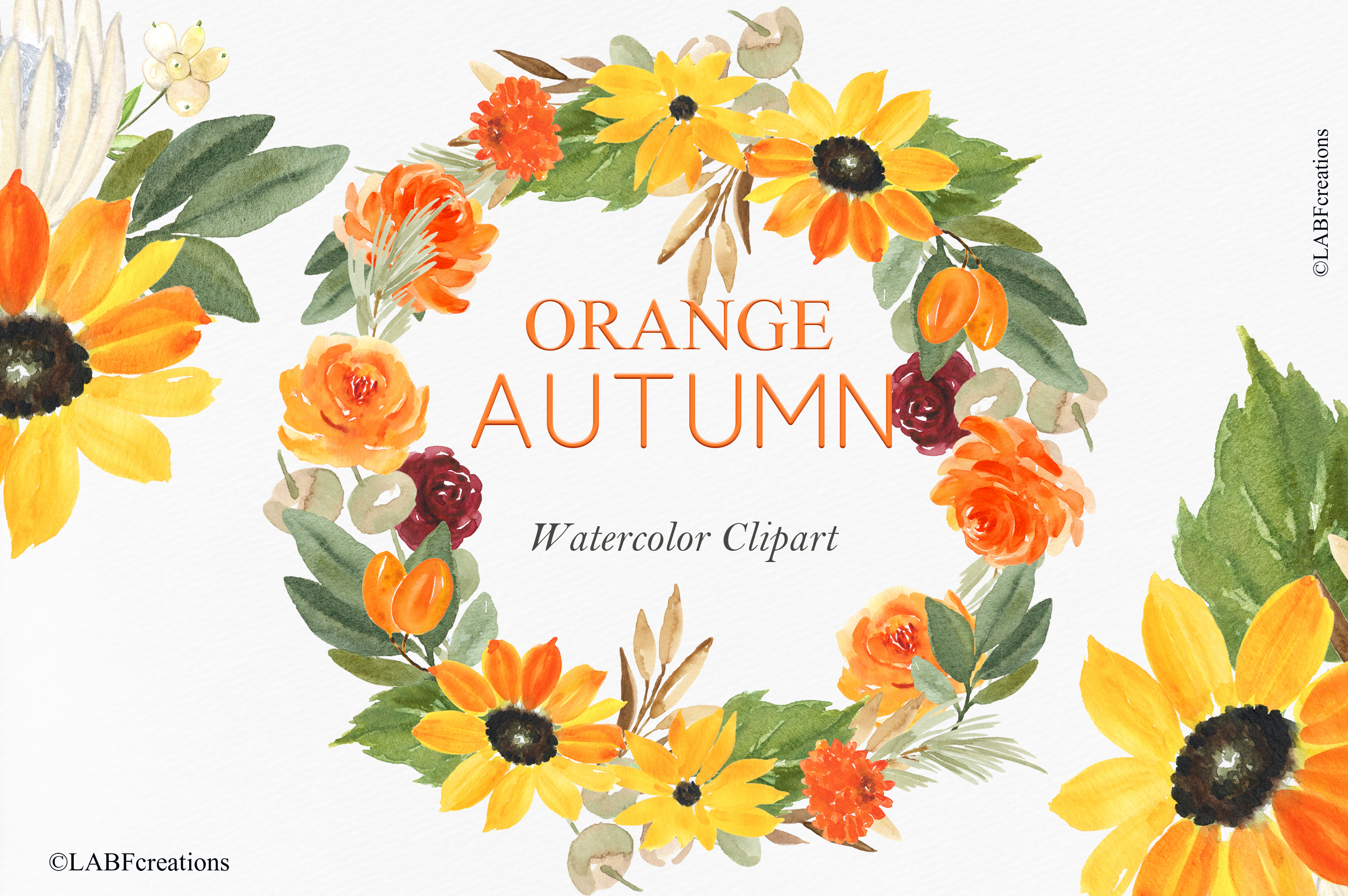 Orange, red and burgundy autumn flowers collection. example image 5