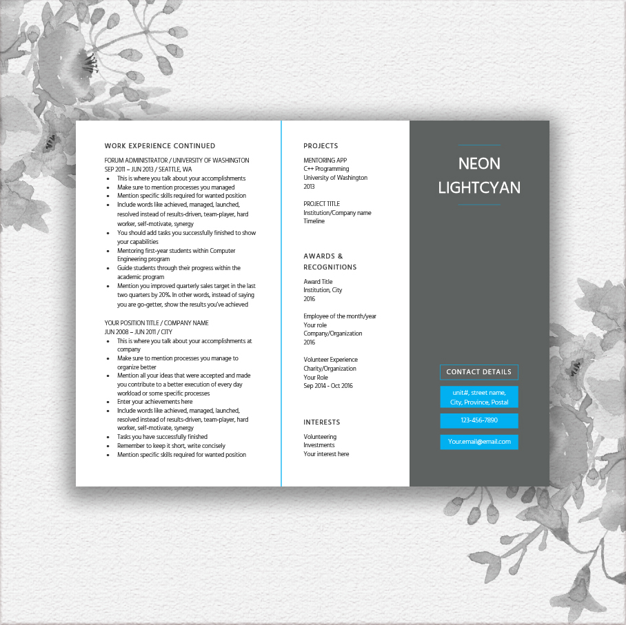 Landscape Resume Template example image 3