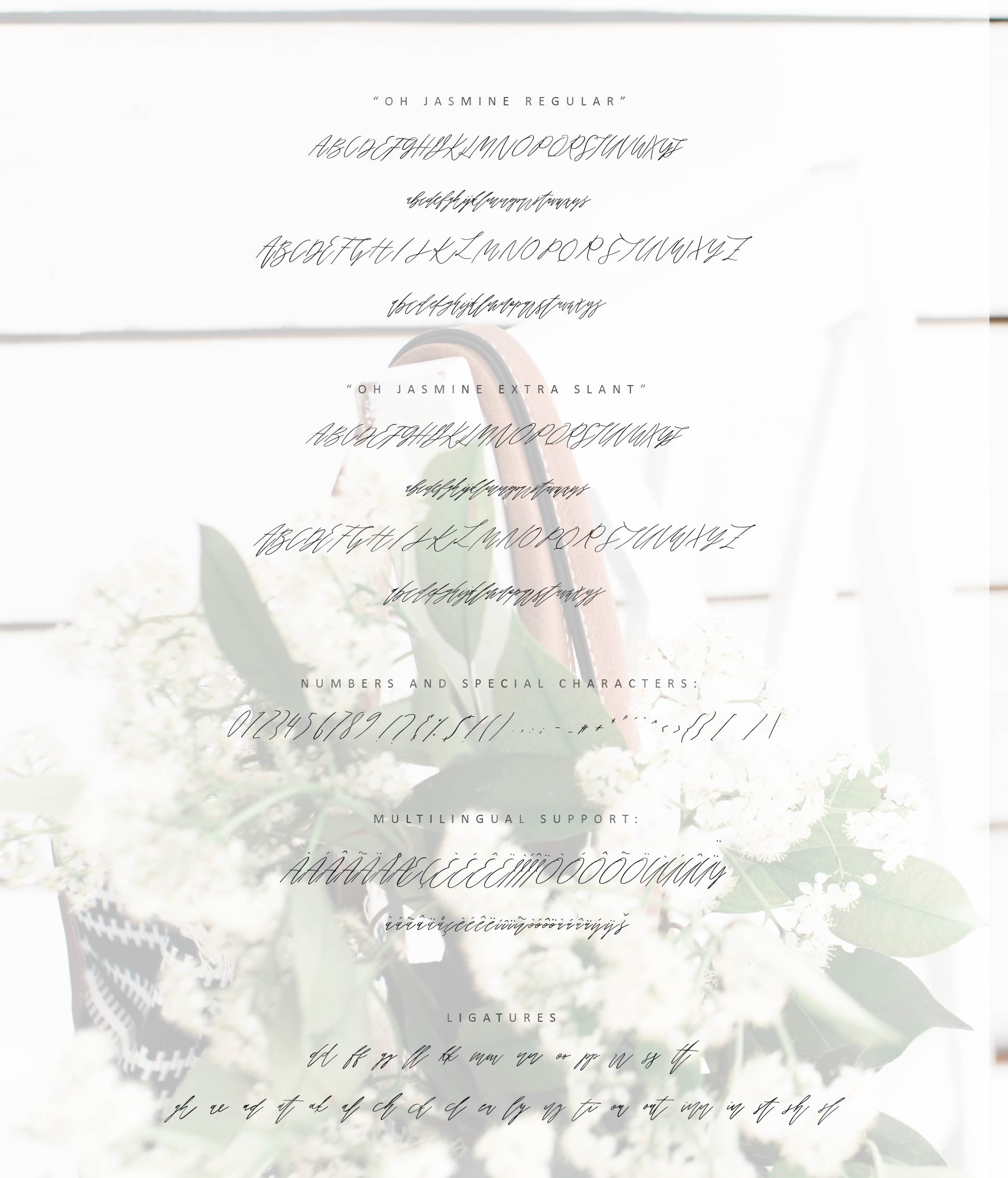 Oh Jasmine Signature Script example image 4