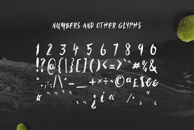 Sanös Extended Script Font example image 8