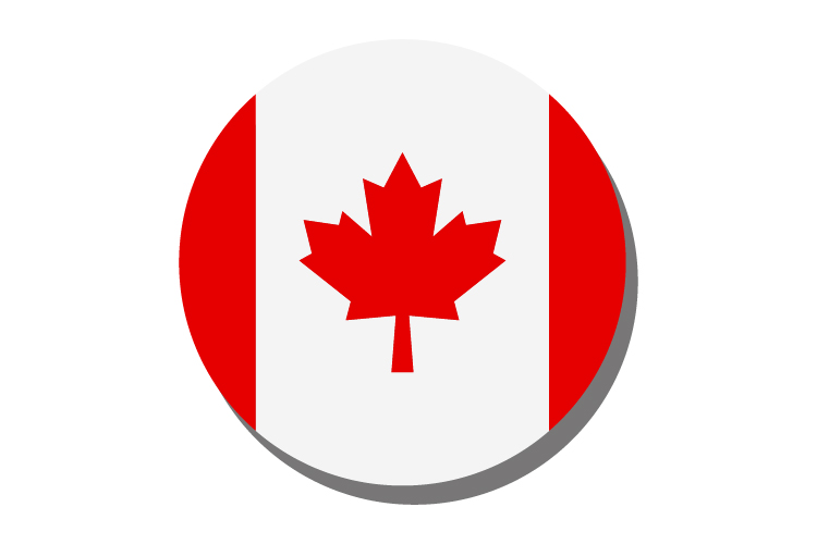 Canada flag example image 1