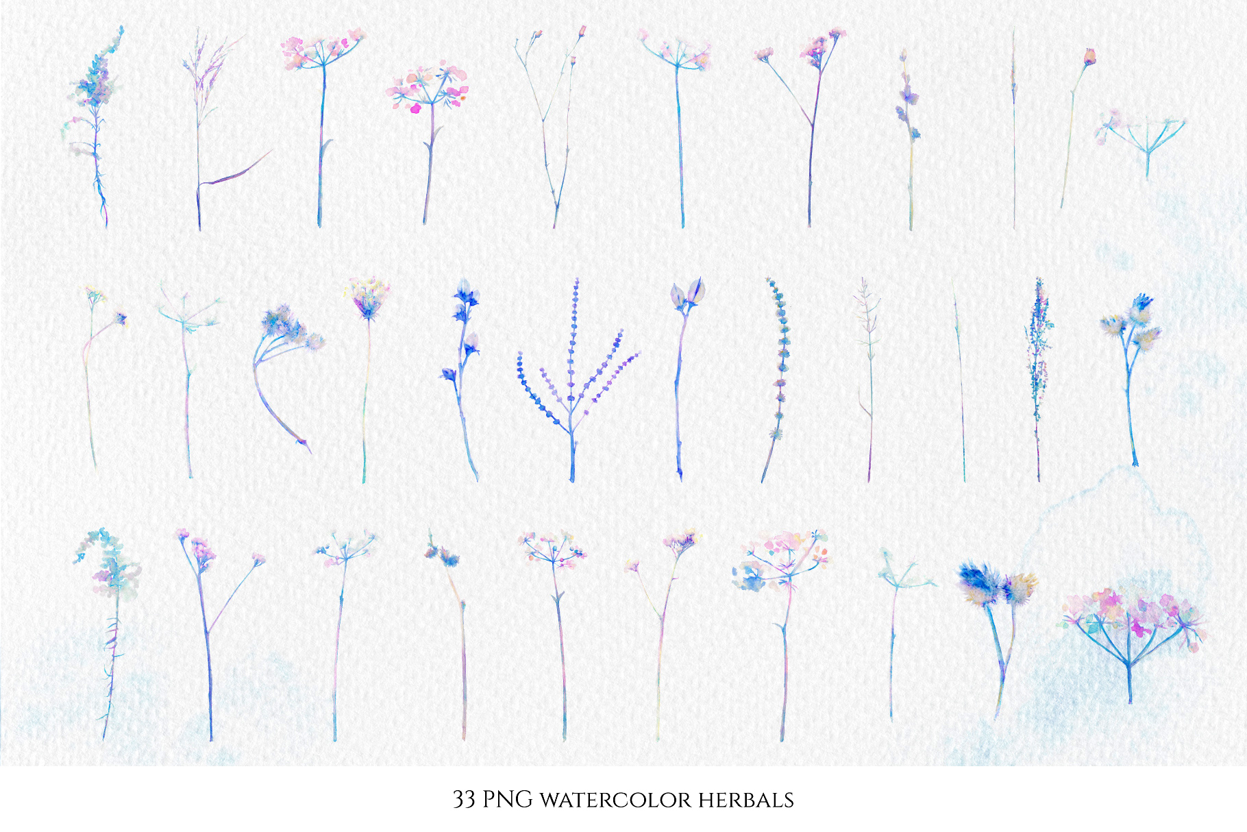 Watercolor floral design collection, herbal and ice example image 2