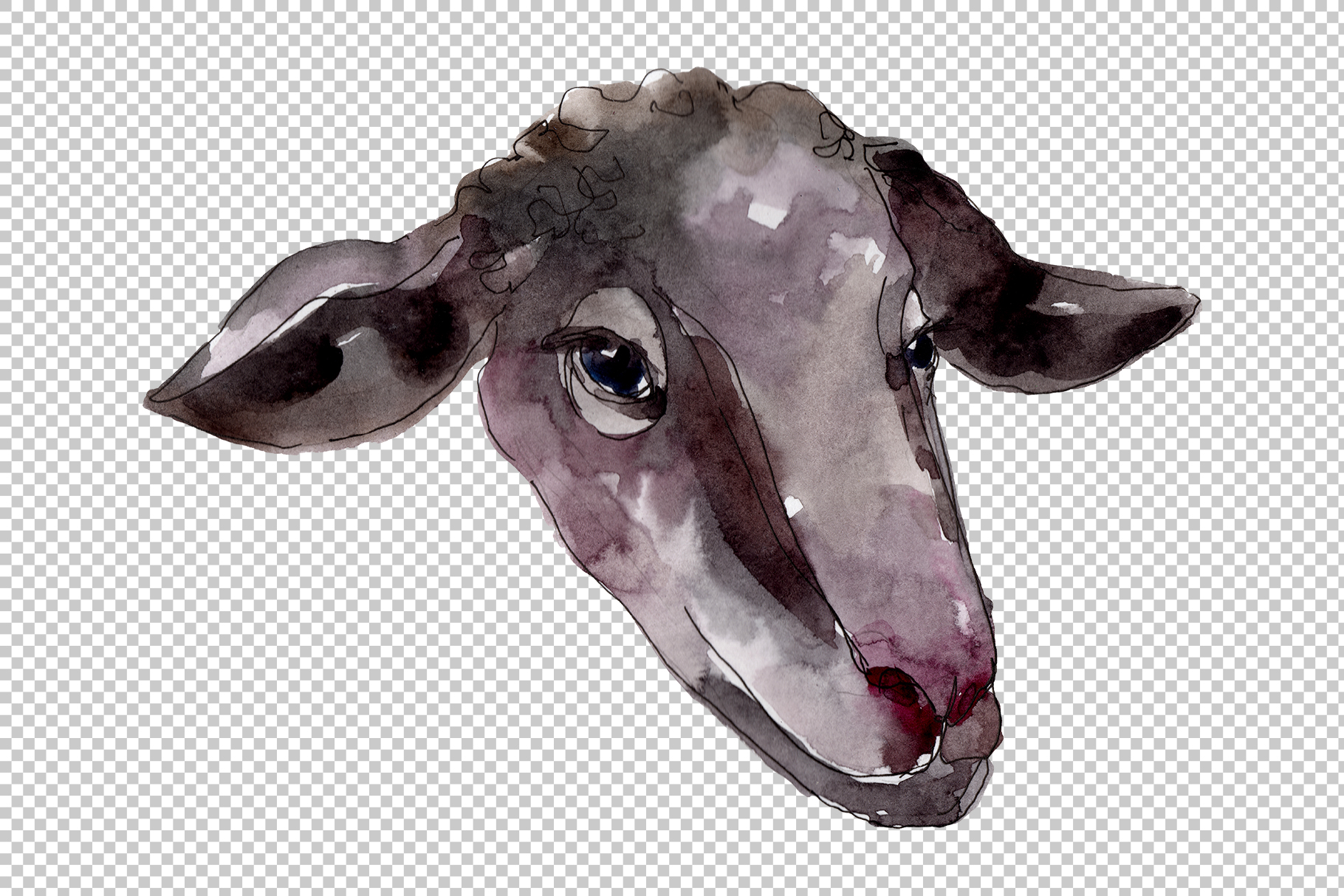 Farm animals Ram head Watercolor png example image 7