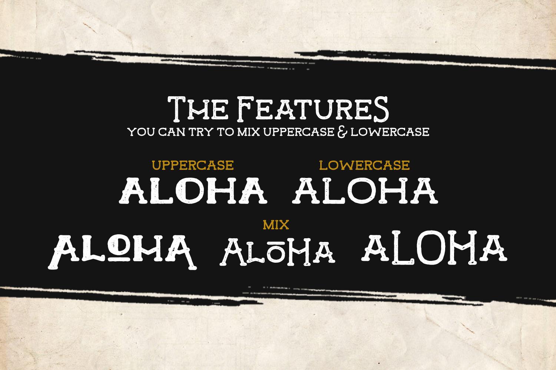 Hamer Typeface example image 3