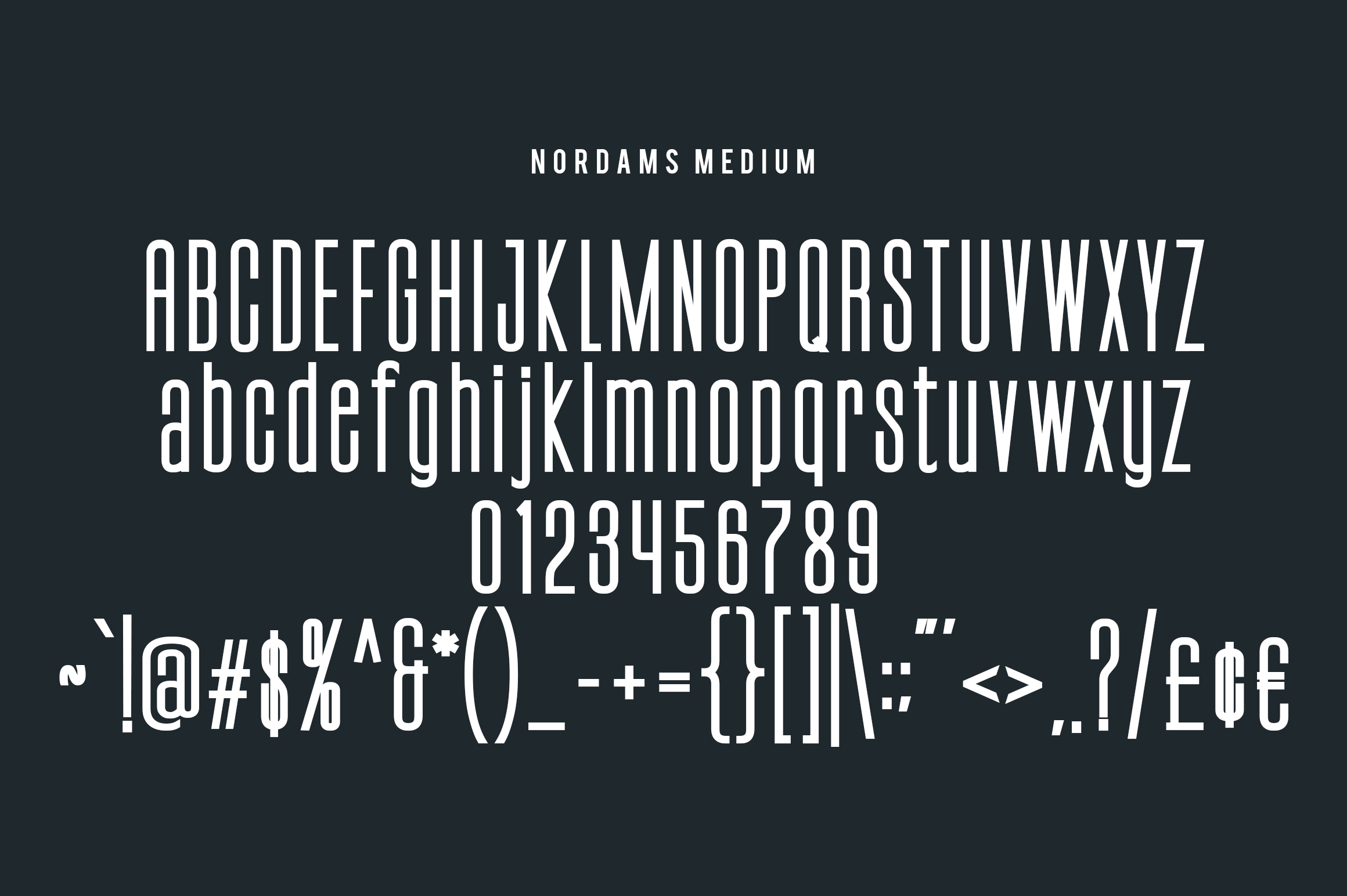 NORDAMS - Sans Serif example image 12