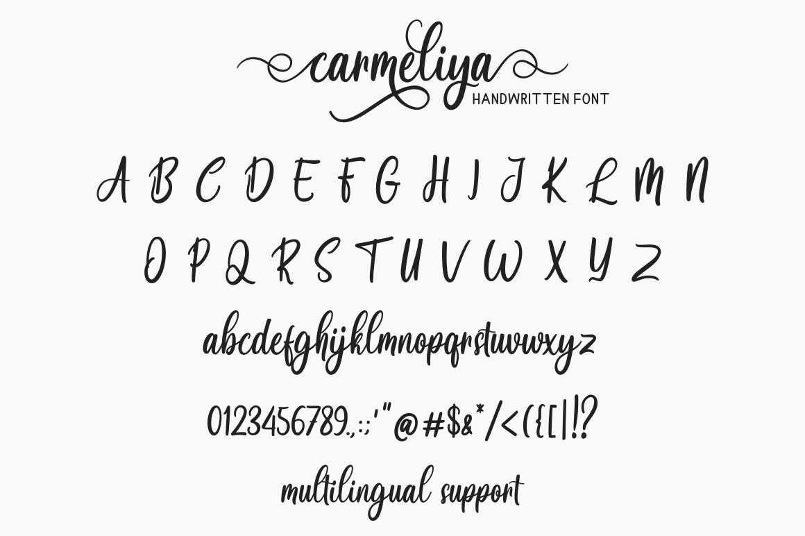 Carmeliya example image 7