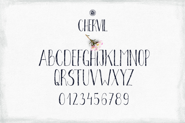 Chervil example image 4