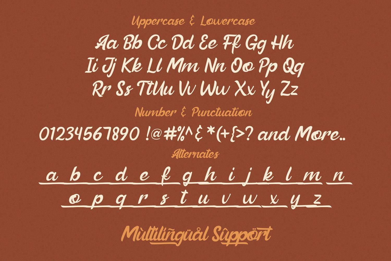 Beautiful Vibes - Bold Script Vintage Retro Font example image 13