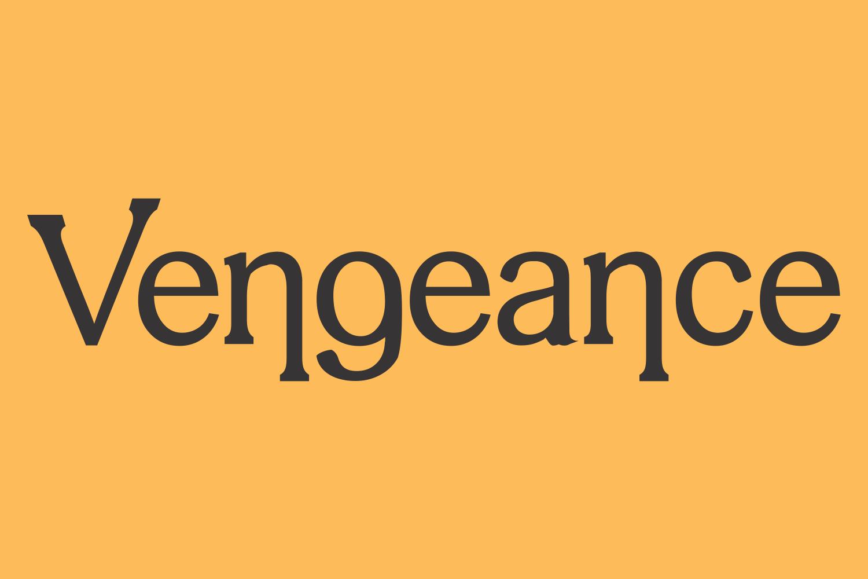 Vengeance example image 1