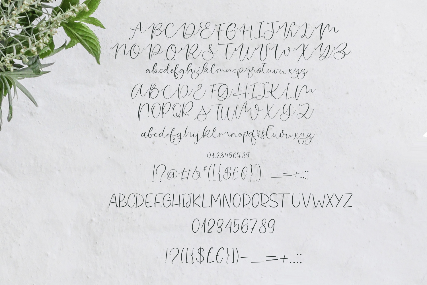 Mint Biscuit Font Duo example image 5