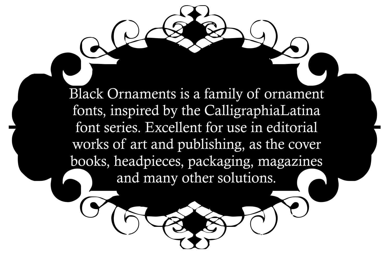 Black Ornaments  example image 6