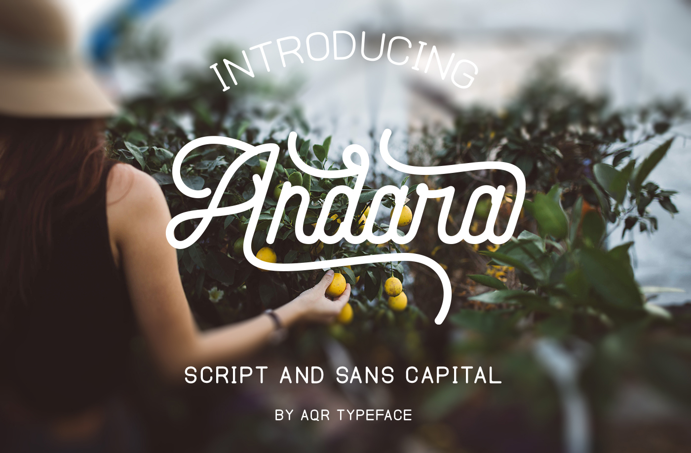 Andara Font Combination ( 30 % OFF ) example image 1