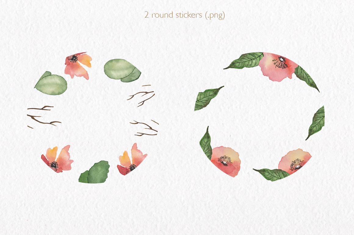 Spring florals. Watercolor floral collection. example image 8