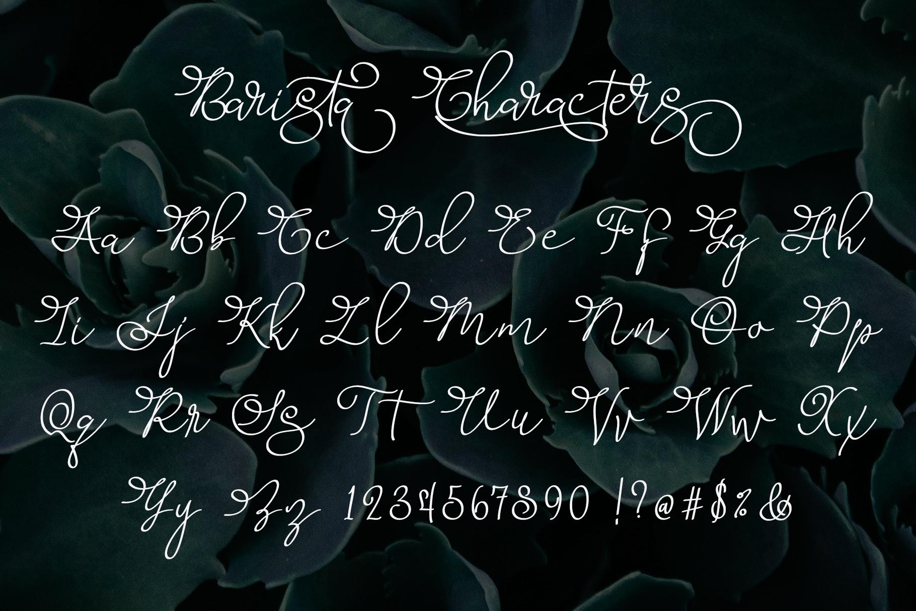 Barista Script Font example image 5