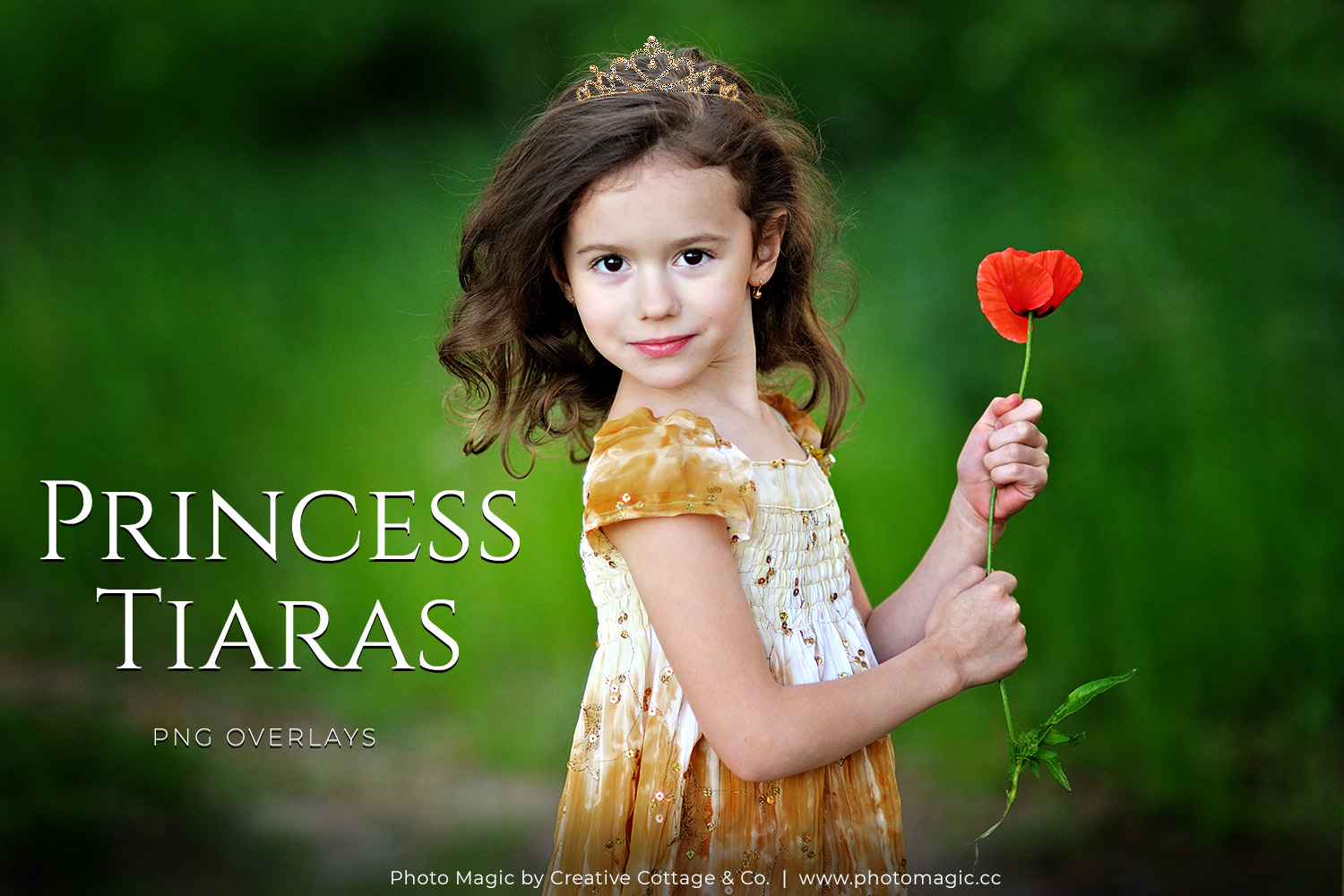 Fantasy Princess Tiara & Crowns Photo Overlays example image 1