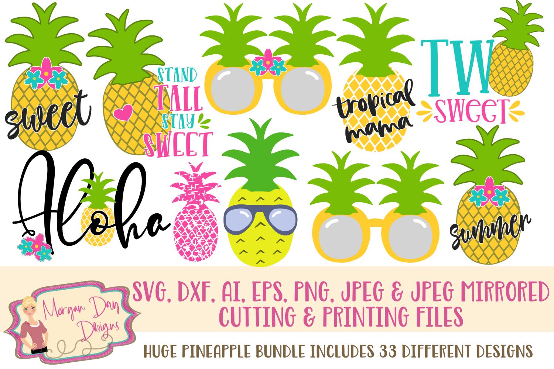 Huge Pineapple Bundle SVG, DXF, AI, EPS, PNG, JPEG example image 1