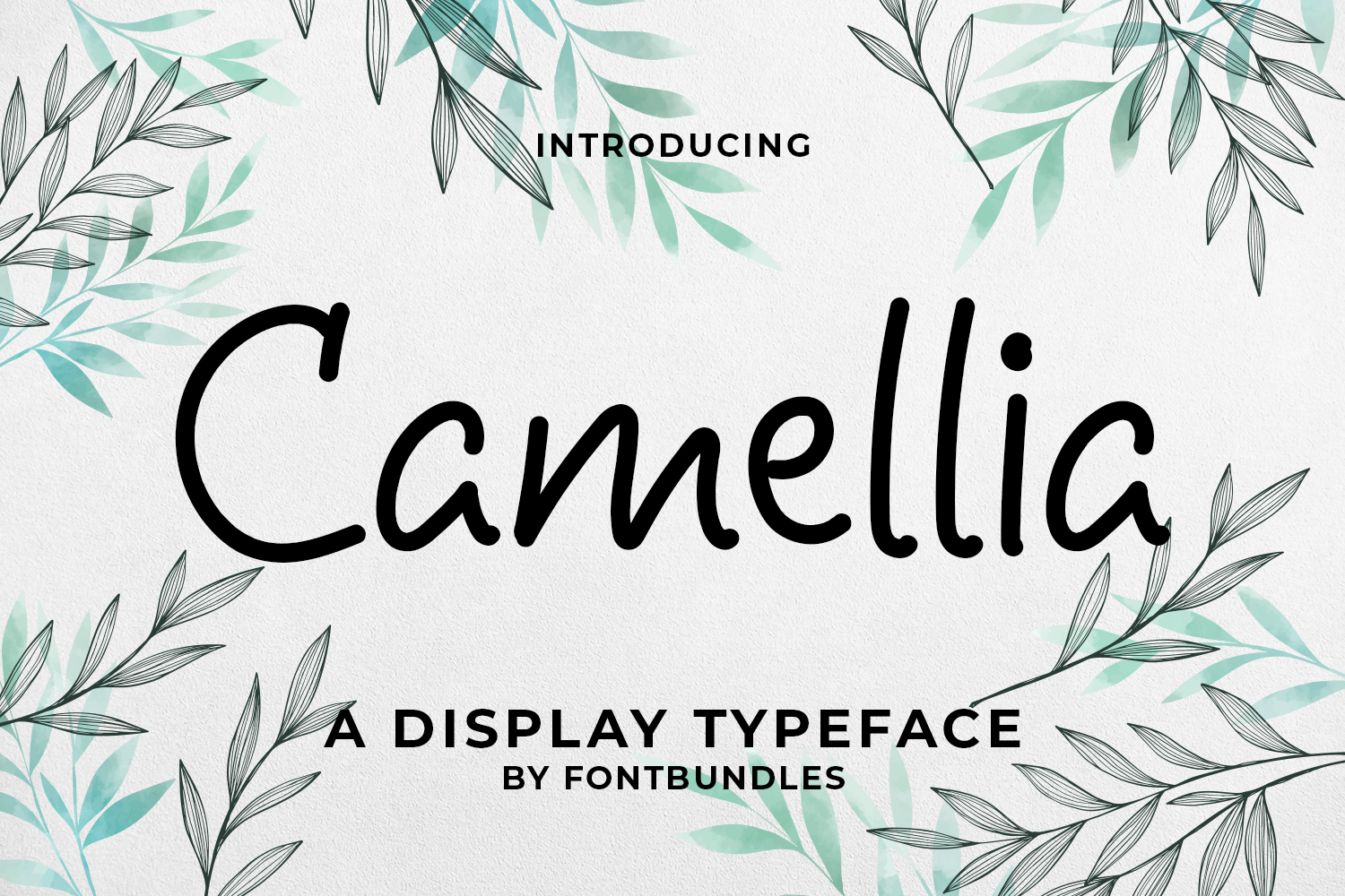 Camellia example image 1