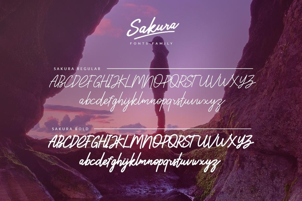 Sakura - Font Family example image 6