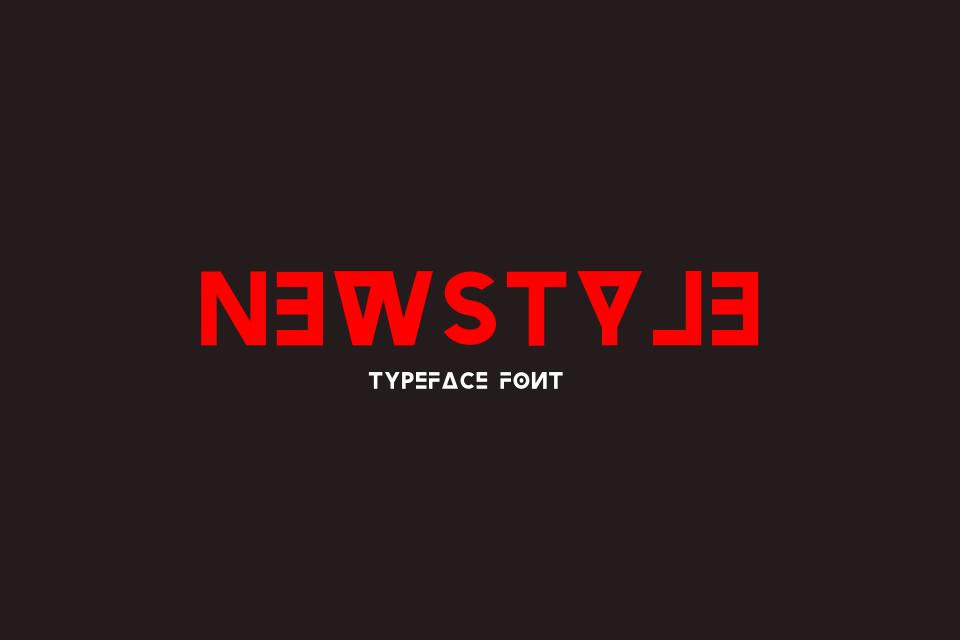 Newstyle Typeface Font example image 1