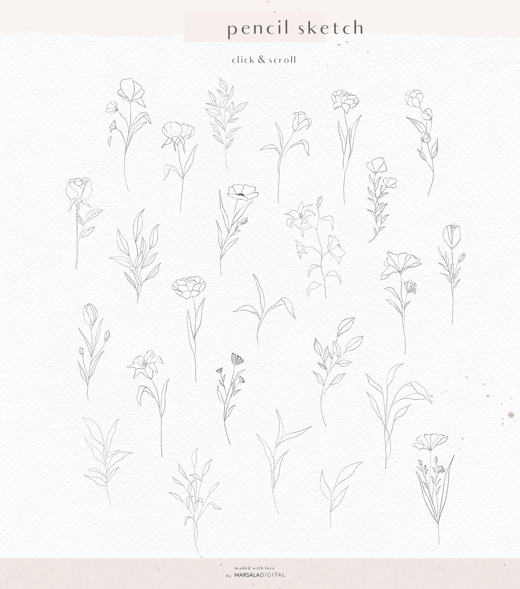 Floral Pencil Sketches Line Art - La fleur example image 7