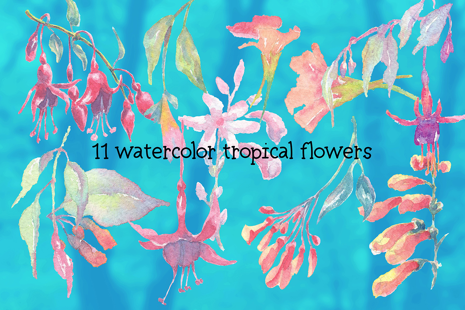 hummingbirds & tropical flowers watercolor clipart example image 5